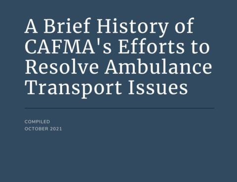 A Brief History of CAFMA's Efforts